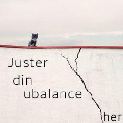 Svamp & Ubalance skeden